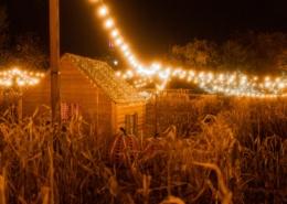 lumiere-champ-cabane